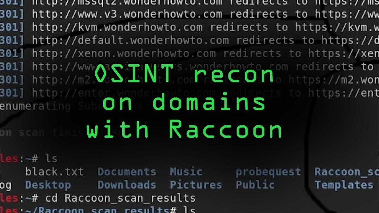 How to Conduct OSINT Recon on a Target Domain with Raccoon