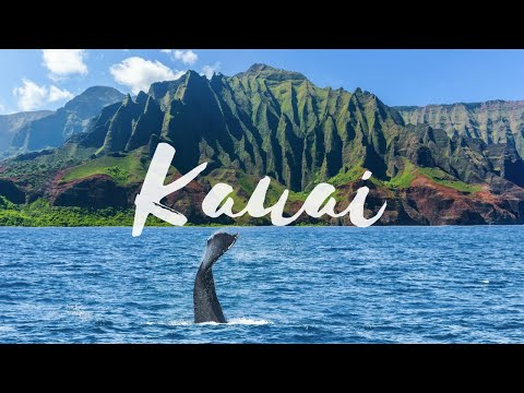 Kauai Vlog WHALES 50 FOOT WAVES AND NA PALI COAST! (2017) 🌴