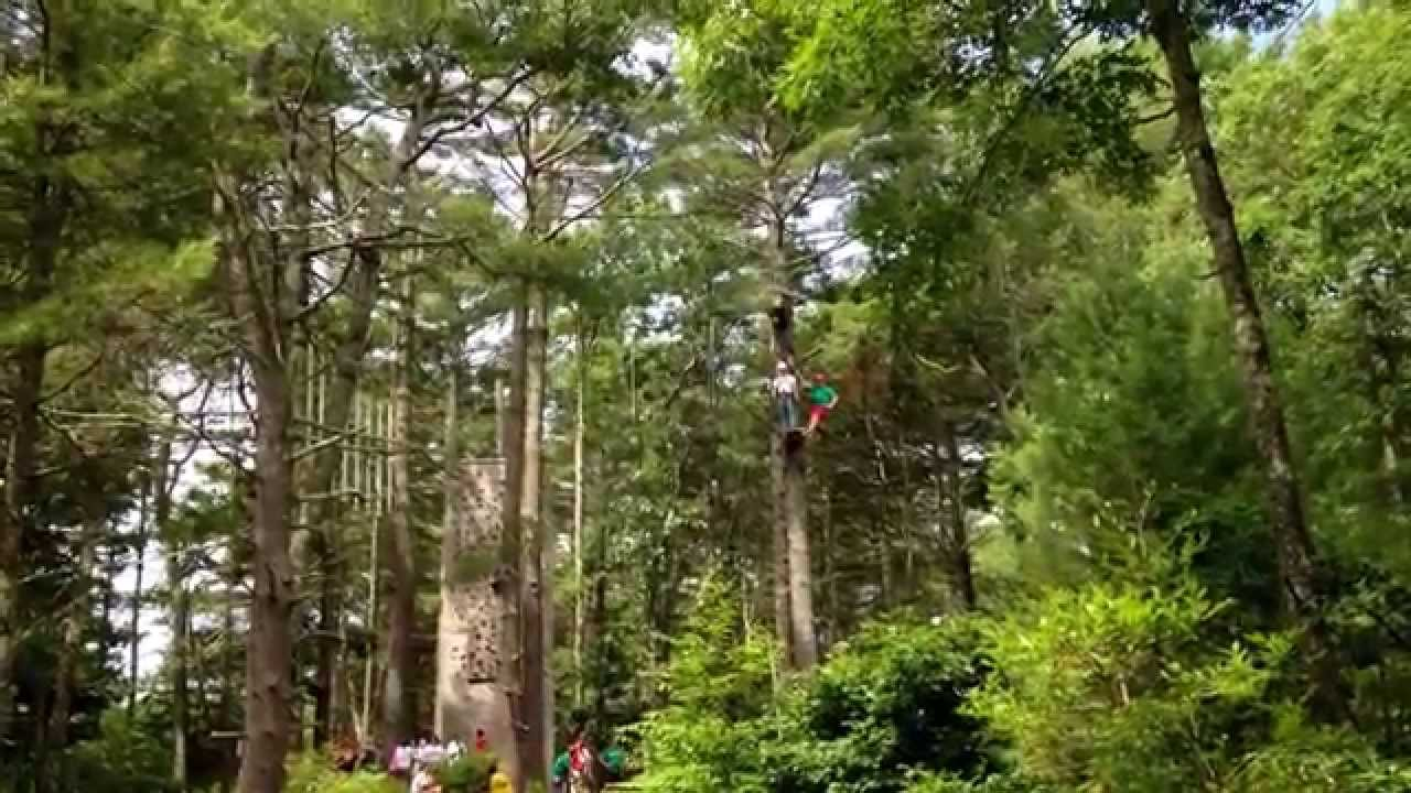 All zip lines are not the same; our course is a genuine canopy tour built directly in the trees and connected through platforms that sit high above the forest metrdisk.cf's a guided experience with 2 guides for each 8 guests. You experience progressively faster zips and a variety of tree types.