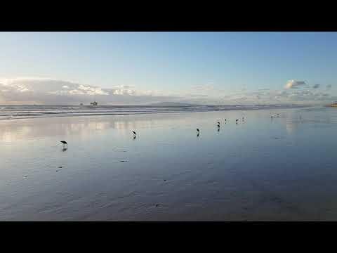 Huntington Beach November 29, 2019 -Part 2 Of 14