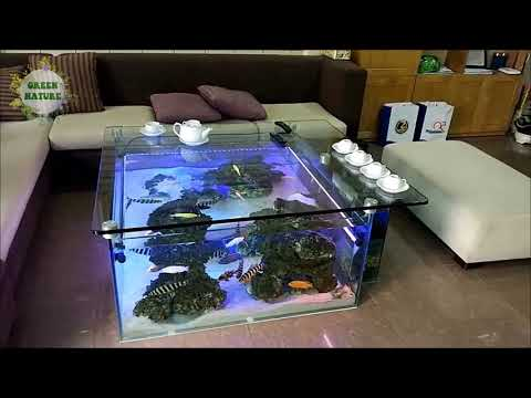 Aquarium In Coffee Table   Soi Pets ✔