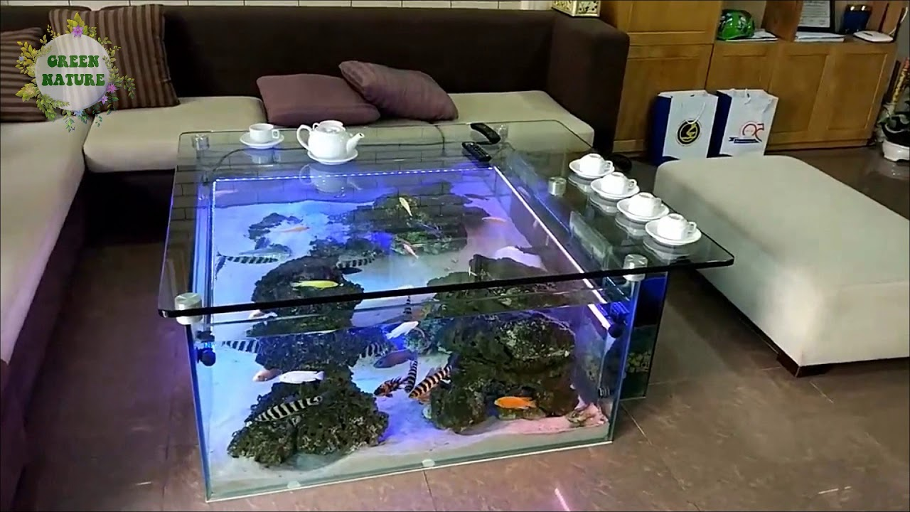 - Aquarium In Coffee Table Green Nature ✓ - YouTube
