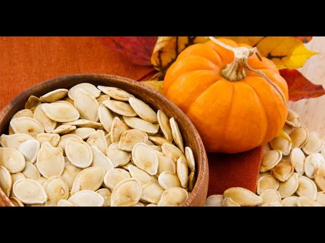 pumpkin seeds for dogs dose