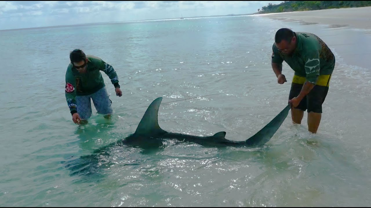 Fraser Island Fishing Report