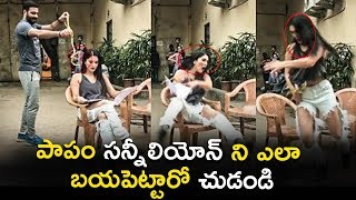 Sunny Leone Snake Prank At Studio | Silver Screen | Latest Telugu Cinema News ||