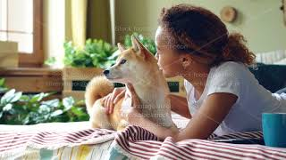 Happy girl student is feeding her small dog and caressing it lying on bed at home, while animal is