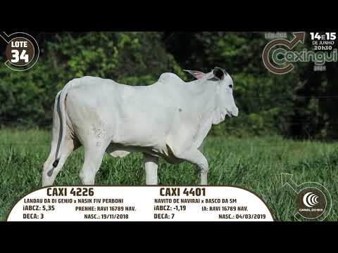 LOTE 34   CAXI 4401, CAXI 4226