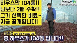 [한국농수산TV] 하우스 104동 운영하고 남보다 2배…