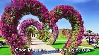 Best good morning ringtone video WhatsApp status ringtone Hindi songs