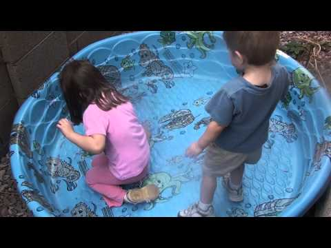 Kids trying to catch a lizard in a swimming pool!