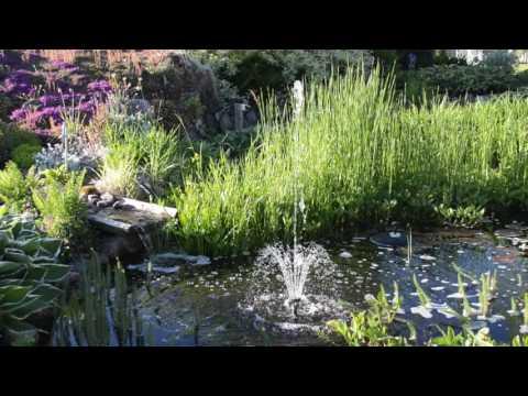 Kanon Fontänpump Syncra Pond 2.5 - YouTube DU-85