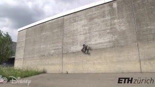 VertiGo: The Wall-Racing Robot (Full Video)