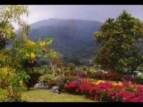 El Tambor de la Alegria (Tamborito)-PANAMA