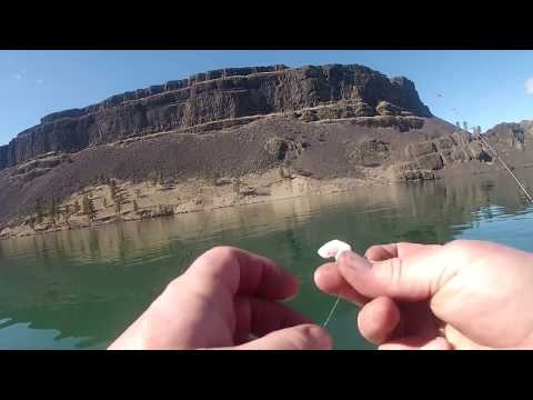 рыбалка на Сига с лодки . Fishing for whitefish