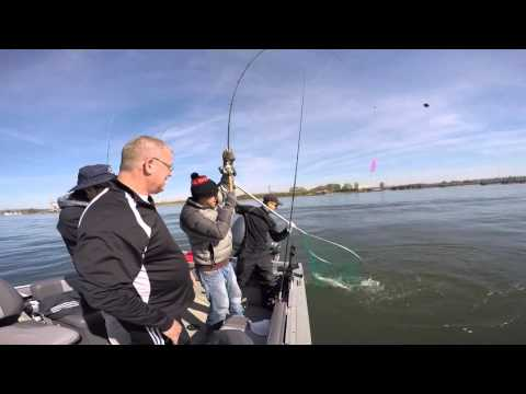 Spring Chinook Salmon fishing on the Columbia River in Portland, Oregon March 31, 2016.