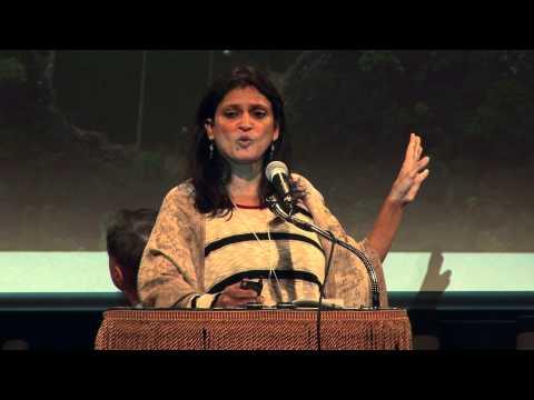 Anuradha Mittal: Stealing Nature