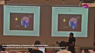 I. Neural Network Capacity & II. Systems Biology of Circadian Rhythms