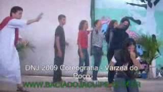 dnj 2009 coreografia vrzea do poo