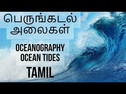 Tamil - Oceanography Ocean Tides  பெருங்கடல் அலைகள் TNPSC UPSC IAS Group 2a,b