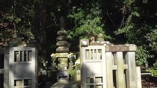 源頼朝の開運にあやかってお墓参りをしてきました。 近くに島津重豪や北...