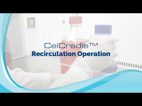 celcradle:-perfusion-operation