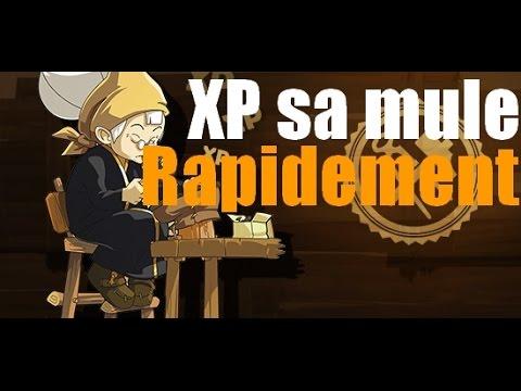 Comment XP sa mule rapidement