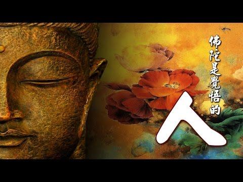 雜阿含101經-佛陀是覺悟的『人』【德藏法師】