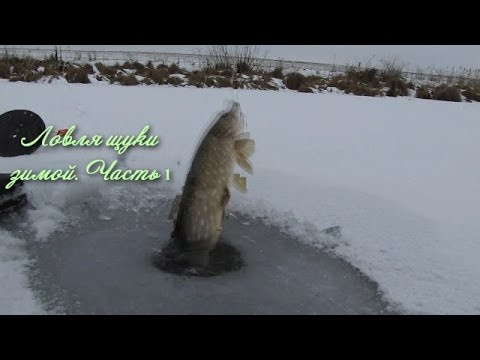 Ловля щуки зимой на жерлицы Часть 1 відео рибалка зима 2015  Pike Fishing Winte
