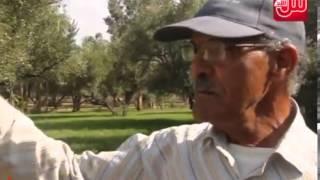 فيديو حصري لشباب يمارسون الجنس مع أجنبي بمراكش
