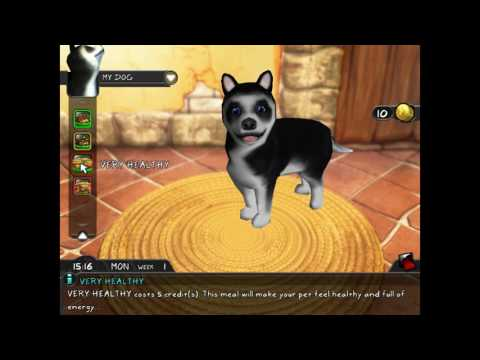 nL Live - BELATED BIG DOG BIRTHDAY STREAM