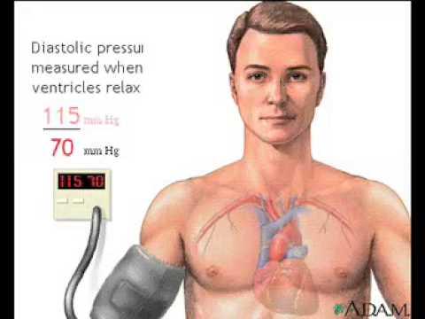 Blood pressureAnatomy VideoMedlinePlus Medical Encyclopedia