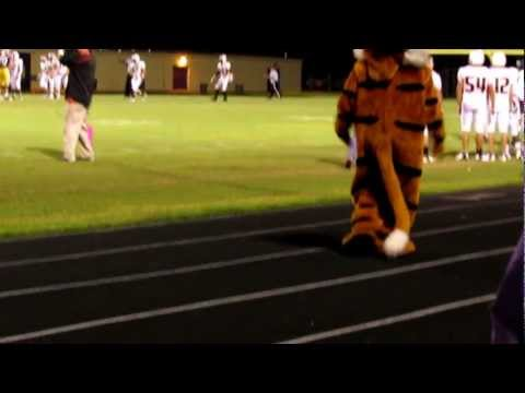 Tiger Mascot dances to the Smithville Tiger Band