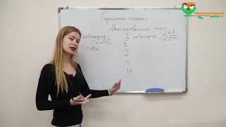 Курсы турецкого языка для начинающих. Урок 1