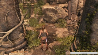 Rise of the Tomb Raider™ стрим -1