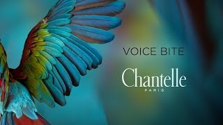 Chantelle - Voice Bites