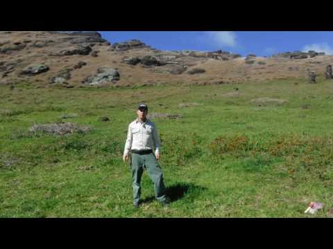 Hunting Native Insects in Crater Lakes on Easter Island