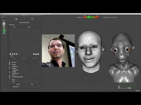 Realtime Facial Animation