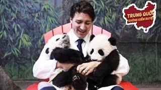 Canada Đã Bán Mình cho Trung Quốc? | Trung Quốc Không Kiểm Duyệt