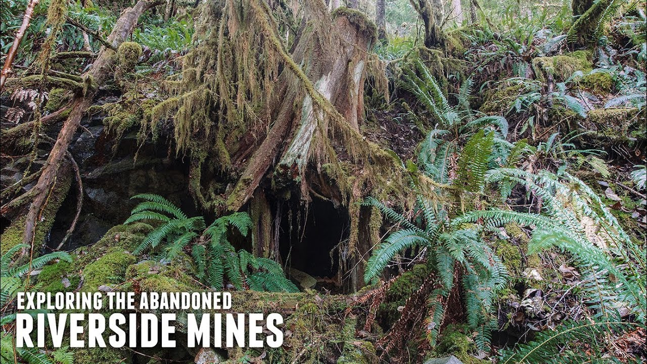 how to make a mining claim tasmania
