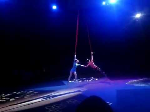 The Attraction of circus at Taman Safari Indonesia