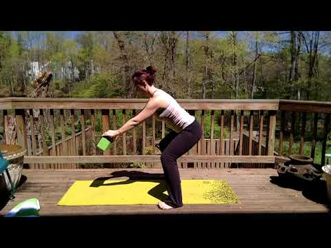 gentile yoga for back and pelvis