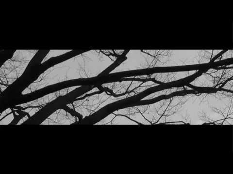 オモイメグラス/事象の果て【MV】