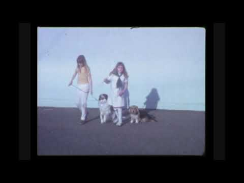 1974 4-H Dog Training at Walter Kynoch Elementary School