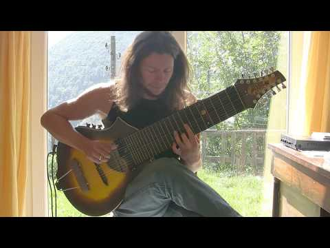 Old folk song on beartrax guitar by jan laurenz