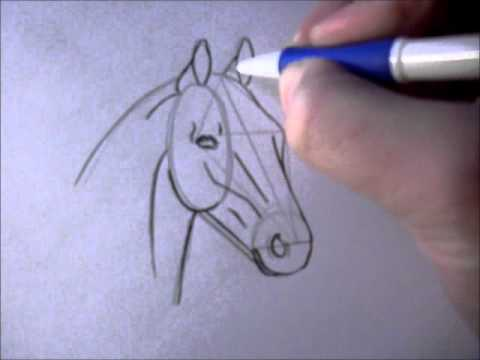 how to draw a simple horse head