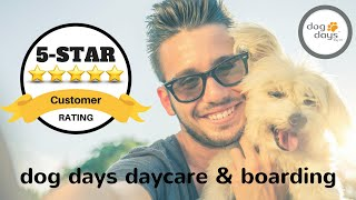 St Paul Dog Daycare & Boarding Incredible 5 Star Review