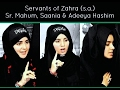 Download Noha Bibi Fatima (as) | Hashim Sisters | Ali Bohat Roay MP3 song and Music Video