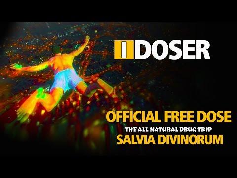 iDoser FREE Binaural Brain Dose: Salvia Divinorum Trip Simulation