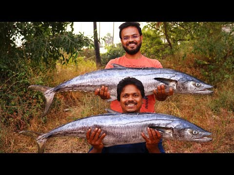 King Fish Fry Recipe | Giant King Fish Masala Recipe | Big Fish Recipe By Grandpa Kitchen
