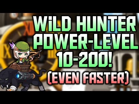 Wild Hunter PowerLevel 10-200 IN LESS THAN 1 HOUR!